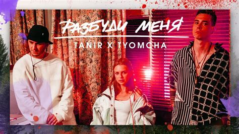Tanir & Tyomcha